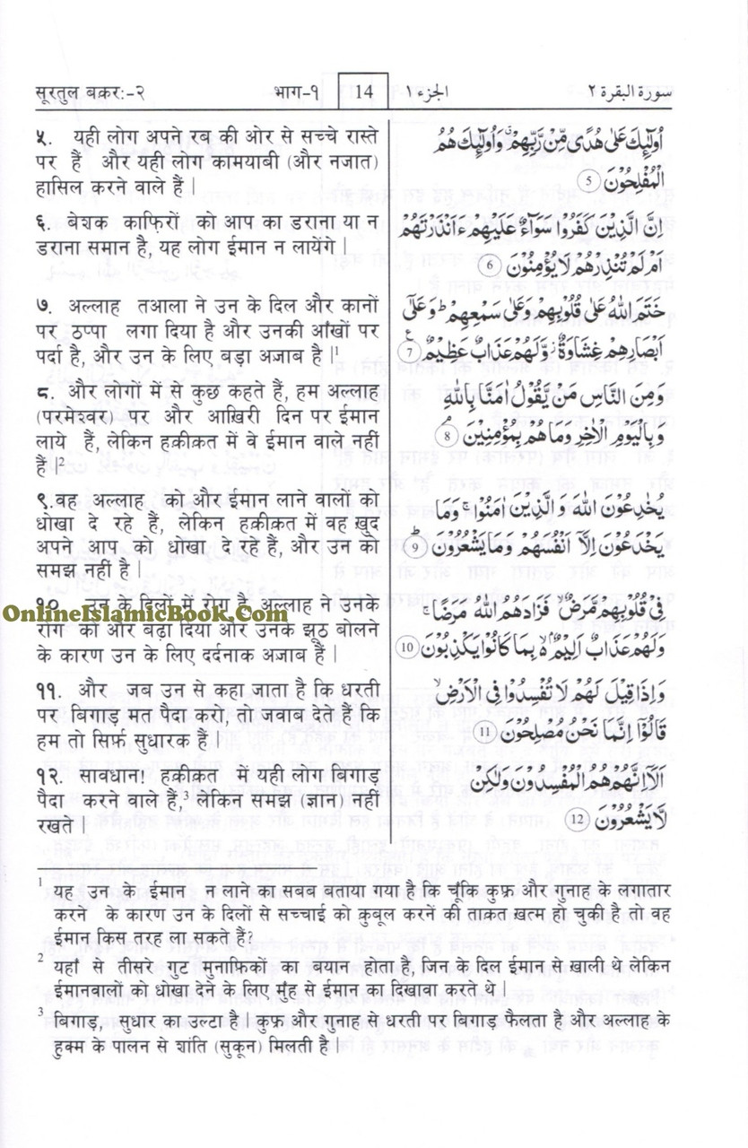 Quran In Hindi Language (Arabic To Hindi Translation with Tafseer)