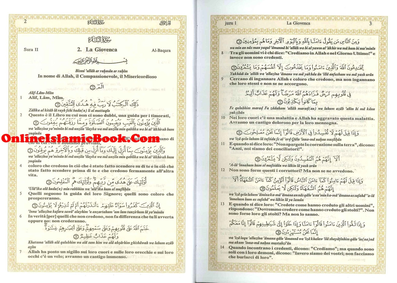 Translator Italian: Noble Quran In Italian Language IL SACRO CORANO