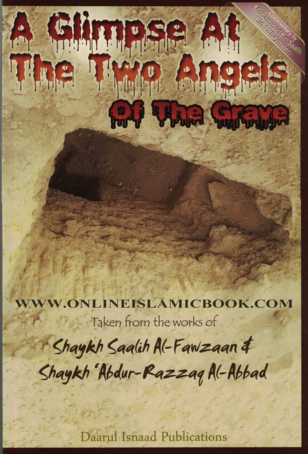 A Glimpse At The Two Angels Of The Grave,9780982647561,