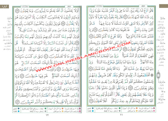 Tajweed Quran Arabic Only Large Size (White Paper) Economic Edition