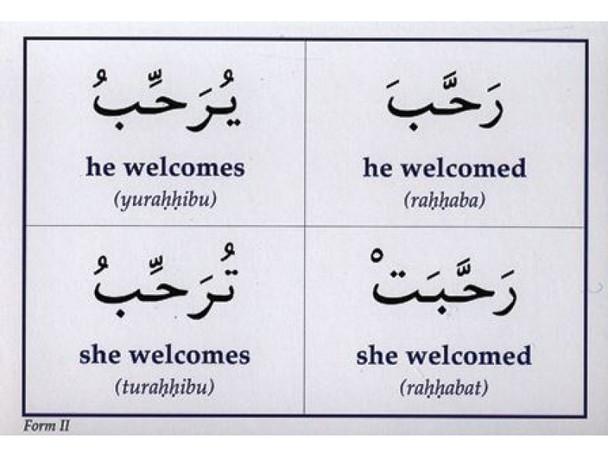 Gateway To Arabic Flash card Set Five (Action Flashcards)