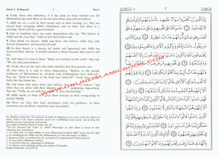 Noble Qur'an with Full Page Arabic/English,Large Size (9.7 X 7.0 X 2.2 inches) Hardcover