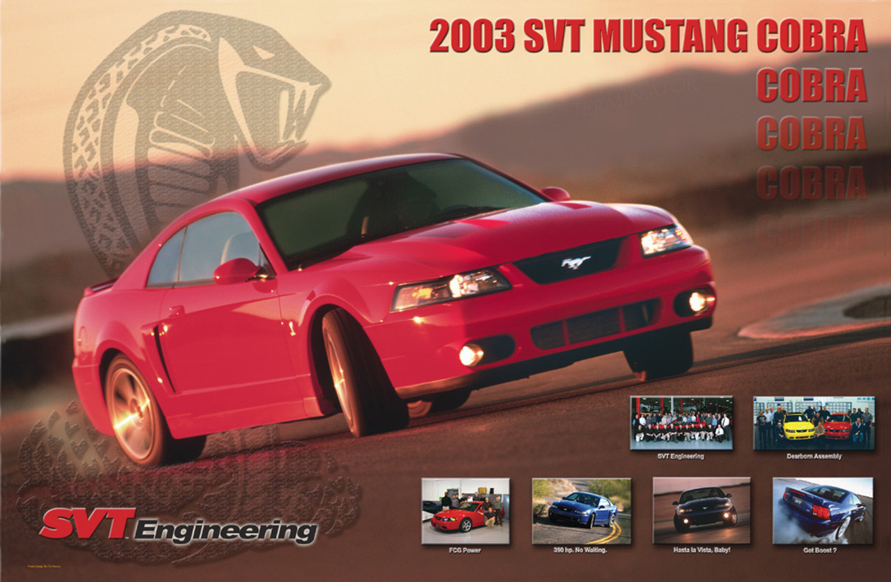 "2003 SVT Cobra Terminator Poster 17""x11"" - Double Sided"