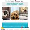 Happy Hunting Healthy Slow Feed Dog/Cat Bowl - Flower Design Blue