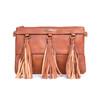 Brown Chic Design with Tassel Crossbody Bag