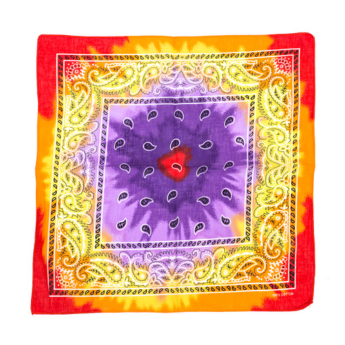 100% COTTON BANDANAS Paisley Square Head Scarf BPS016