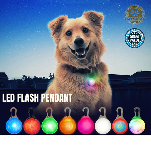 LED CAT HUNTING DOG PET TAG PENDANT LEASH FLASHING COLLAR SAFETY NIGHT LIGHT