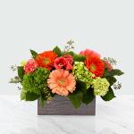 Hello, Gorgeous™ Bouquet