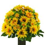 Yellow Sunflower (MD)