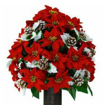 Red and Gold Poinsettia (LG)