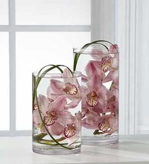 The Tranquil™ Orchid Arrangement