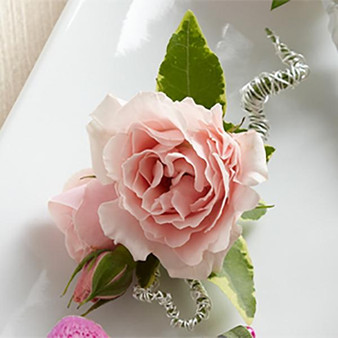 The Pink Spray Rose Boutonniere