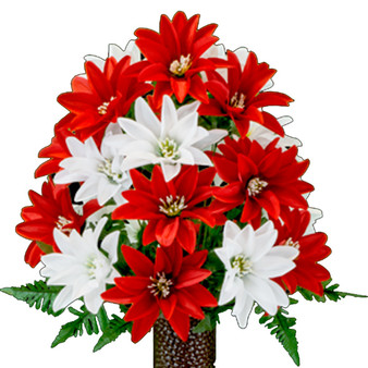 Red and White Dahlias (MD)