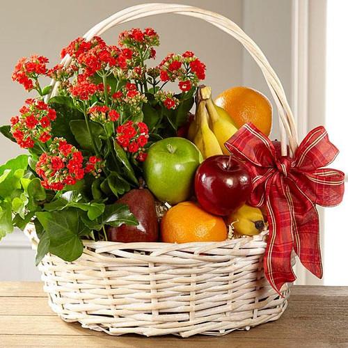 The Garden's Paradise™ Basket