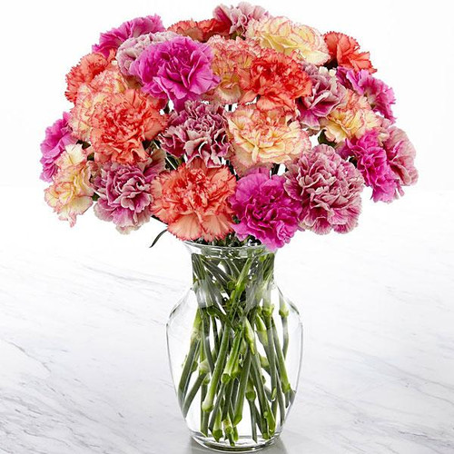 Sweet Carnations Bouquet