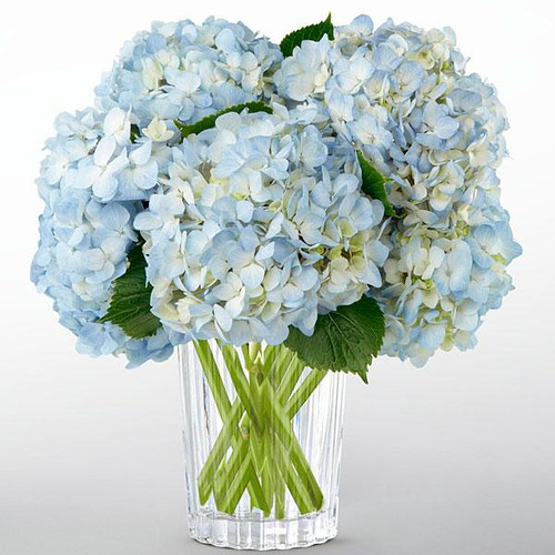 The Joyful Inspirations™ Bouquet by Vera Wang