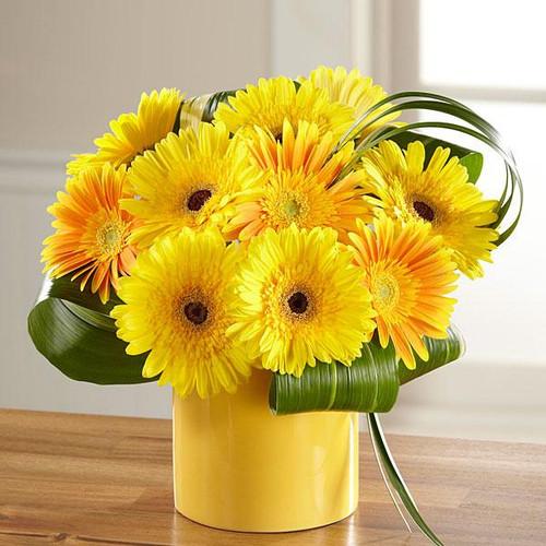 The Sunny Surprise™ Bouquet