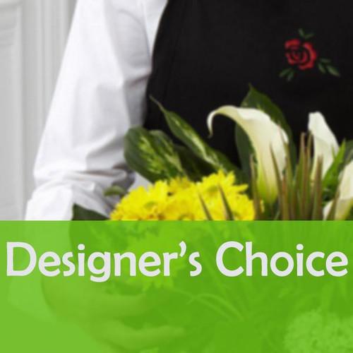 Dish Garden - Designer's Choice