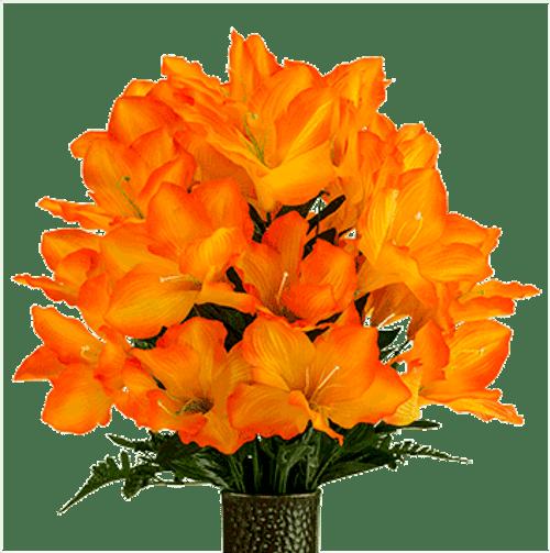 Medium Orange Amaryllis Cone