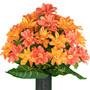 Sunrise Orange Dahlias (MD)