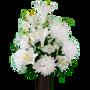 White Lily and Dahlia