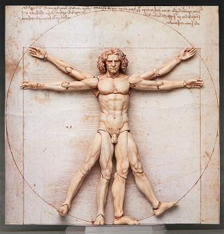 figma Vitruvian Man(2nd re-run)