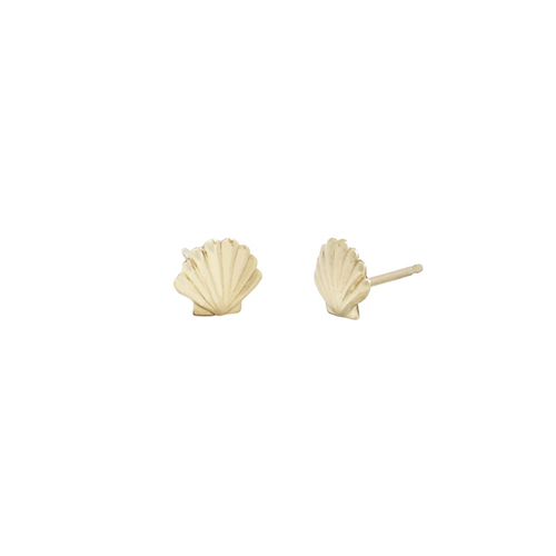 14k Shell Studs