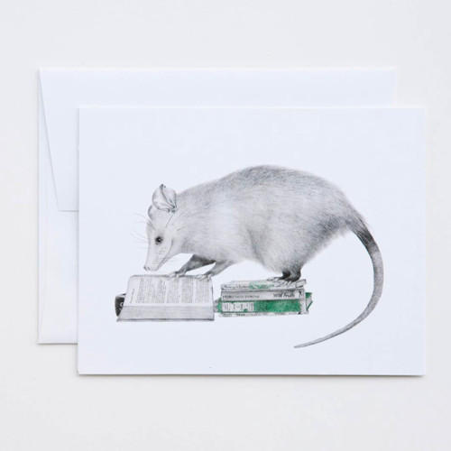 Henry Gossamer Opossum Greeting Card with Whimsical Story