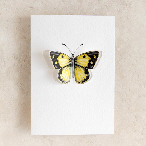 Clouded Yellow Butterfly 3D Greeting Card