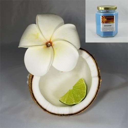 Hawaiian Coconut 210g Hexagon Jar Soy Candle