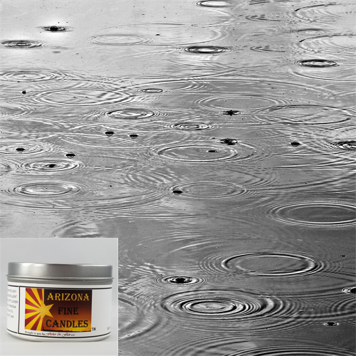Rainy Day 175g Tin Soy Candle