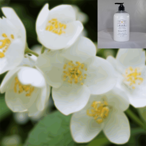 'Jasmine' Hand & Body Lotion