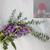 Lavender & Eucalyptus Bubble Bath Bombs - Four Pack