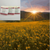 Sun Kissed Fields Cocoa & Shea Butter Natural Soap 4 Pack