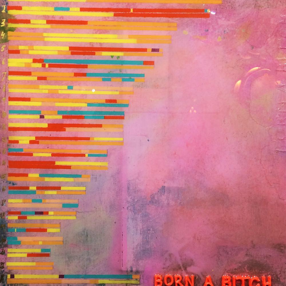 Born a Bitch by Katrien Van Der Schueren