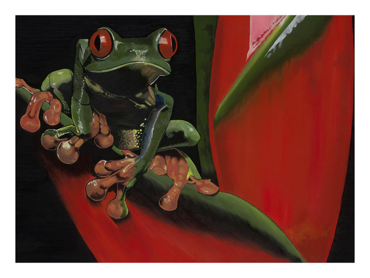 Tree Frog by Chali 2na