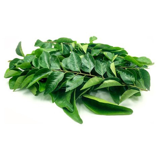 Fresh Curry Leaves 10-12 Stems