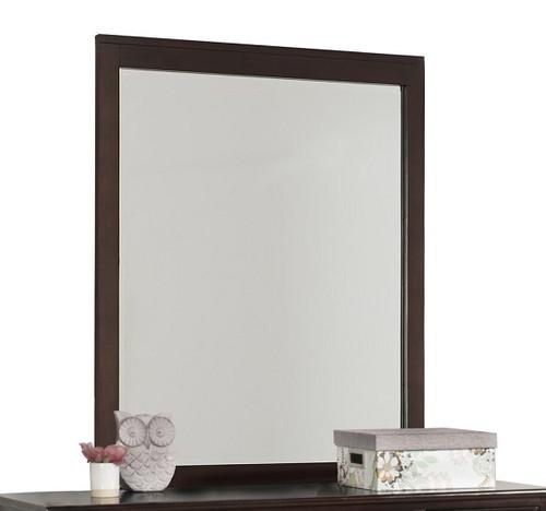 Dolan Chocolate Tall Mirror