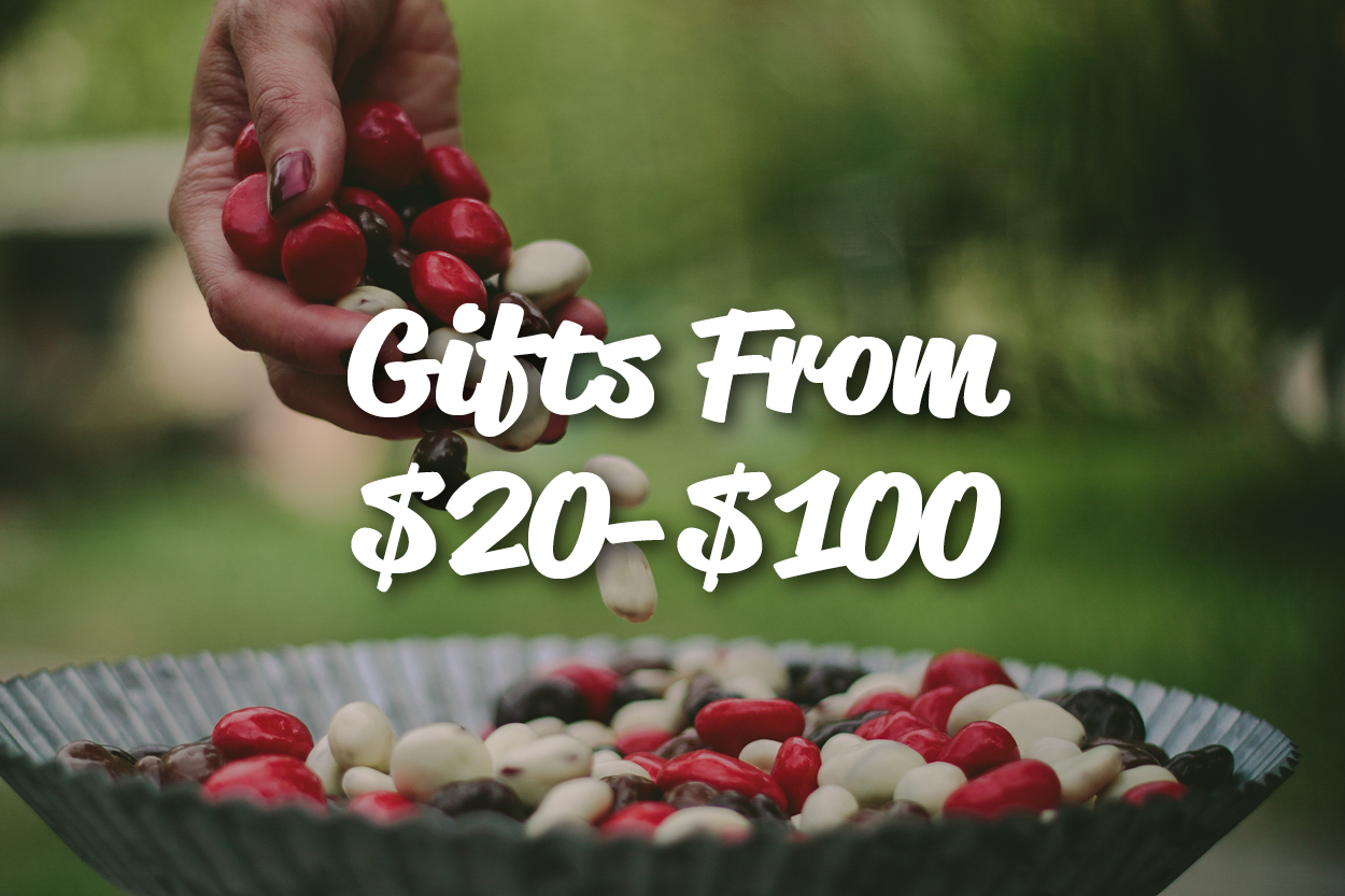 Gifts From $20 - $100