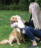 Bulk Bath Towel - Economy Series - With Dog