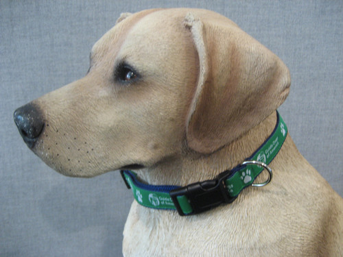 Green dog collar with Navy trim and white Guide Dogs of America logo.