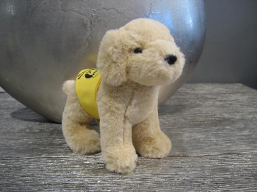 Small Yellow Lab stuffed animal with yellow jacket.