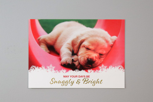 A yellow Labrador Retrieve puppy snuggles in a red play structure.