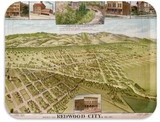 Birch Tray, Map of Redwood City, Made in Finland