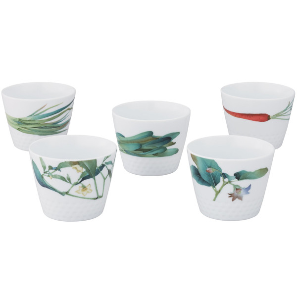 1620-F5301L 7 Ounces White 5 Piece Japanese Cup Set by Noritake