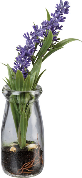 Floral - Lavender In Jar - Set Of 4 (Pack Of 2) 102350 By Primitives By Kathy