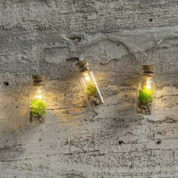 104362 Succulent Jar Lights - Set Of 4 By Primitives by Kathy