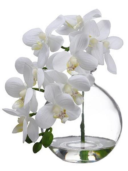 "10"" Phalaenopsis Orchid InGlass VaseCream 8 Pieces LFO956-CR"