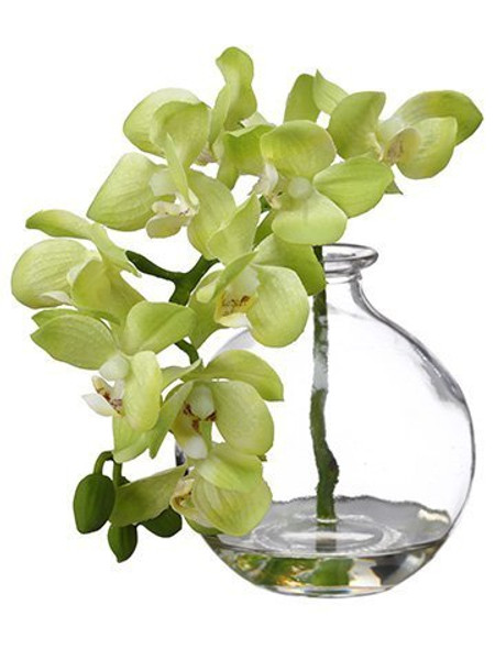 "10"" Phalaenopsis Orchid In Glass Vase Green 8 Pieces LFO956-GR"