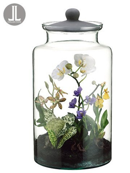 "16"" Mixed Orchid Plant In Glass Jar With Lid Mixed LHO823-MX"